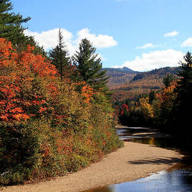 Autumn In The White Mountains 3 by Paula Guttilla