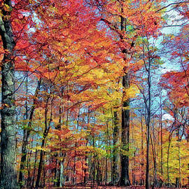 Autumn Is In The Air by Marcia Colelli