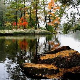 Neal Nealis - Autumn Island