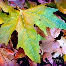 Marlene Rose Besso - Autumn Leaves Heart