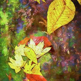 Dan Carmichael - Autumn Leaves on Mossy Tree Trunk AP