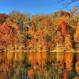 Doug Swanson - Autumn Leaves Reflected on the Lake