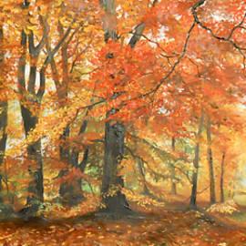 Sorin Apostolescu - Autumn mirage