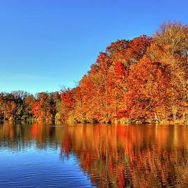 Doug Swanson - Autumn on the Lake