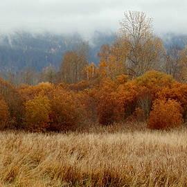 Ed Mosier - Autumn Orange Panorama