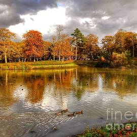 Autumn Over The Lake at Hesketh Park 2 by Joan-Violet Stretch