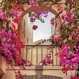 autumn plants and garden in Portugal Algarve by Ariadna De Raadt