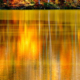 Autumn Pond Abstract by Arlane Crump