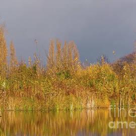 Marv Vandehey - Autumn Pond