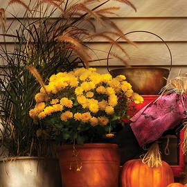 Mike Savad - Autumn - Pumpkin - Autumn Still Life II