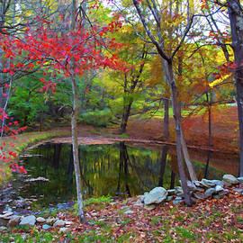 Amy Jackson - Autumn Reflections
