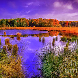 Claudia M Photography - Autumn reflections