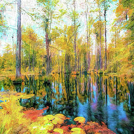 Autumn Reflections in the Swamp AP by Dan Carmichael