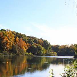 Autumn Reflections by Dora Sofia Caputo