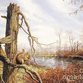 Autumn River-Red Squirrel by Paul Henderson