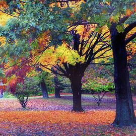 Autumn Symphony by Jessica Jenney