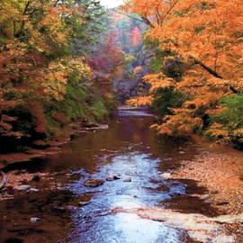 Ruth Housley - Autumn Scene 2