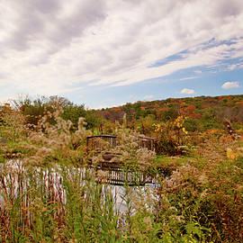 Geraldine Scull - Autumn scenic series IV