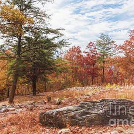 Vizual Studio - Autumn Season Landscape at Fort Mountain Georgia