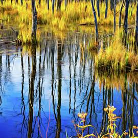Steve Harrington - Autumn Slough 3 - Paint