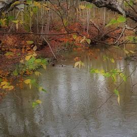 Kay Novy - Autumn Solitude
