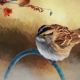 Cathy Kovarik - Autumn Sparrow