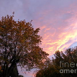 Autumn Sunset 2 by Charles Robinson