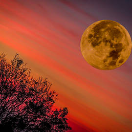 Autumn Super Moon And Irish Sunrise by James Truett