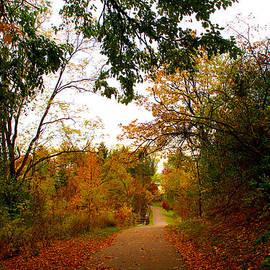 Michael Rucker - Autumn Trail