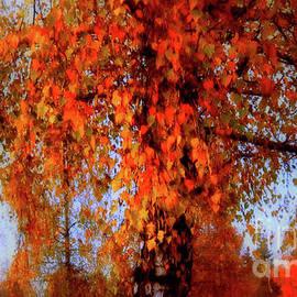 Autumn Tree In Switzerland by Susanne Van Hulst