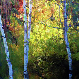 Chuck Kuhn - Autumn Trees Leaves Paint