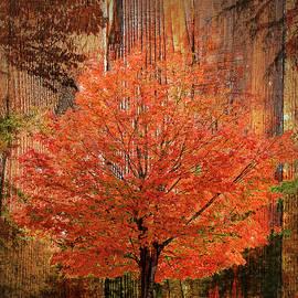 Larry Bishop - Autumn Wood