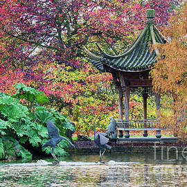 Autumnal Pagoda - Tim Gainey