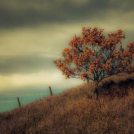 Autumns End by Karl Anderson