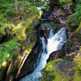 Avalanche Creek Tumbling by Sally Weigand