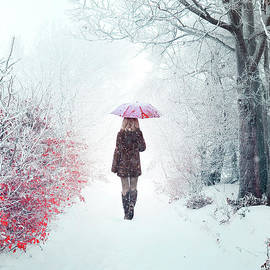 Evelina Kremsdorf - Awaken Into Winter