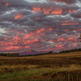 Awe Dawn by Alana Thrower