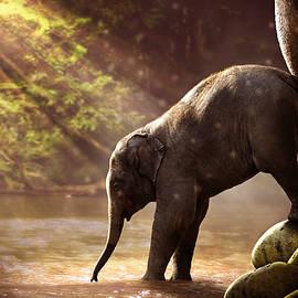 fbmovercrafts - Baby Elephant