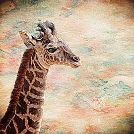 Baby Giraffe Painted by Judy Vincent
