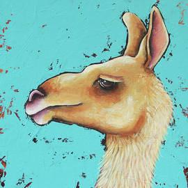 Baby Llama by Lucia Stewart
