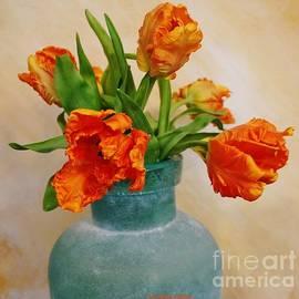 Marsha Heiken - Baby Parrot Tulips