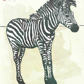 Baby Zebra - stylised pop art poster - Kim Wang
