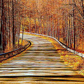 Back Country Road  by Arlane Crump