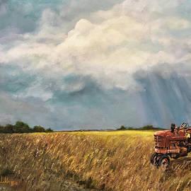 Back Home by Alan Lakin