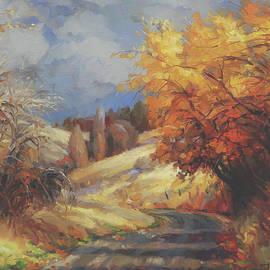 Backroads by Steve Henderson