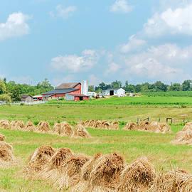 Bailing Hay by John Radosevich