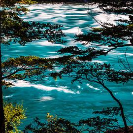 Baker River by Walt Sterneman