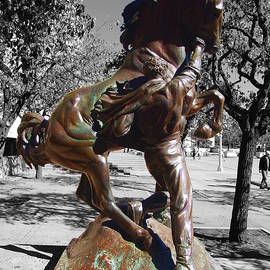 Balboa Park San Diego - Horse Trainer by Glenn McCarthy Art and Photography