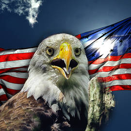 Bald Eagle and American Flag Patriotism