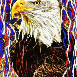 Tina LeCour - Bald Eagle Portrait